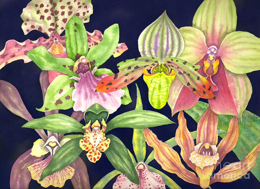 Orchids Painting - Orchids  by Lucy Arnold