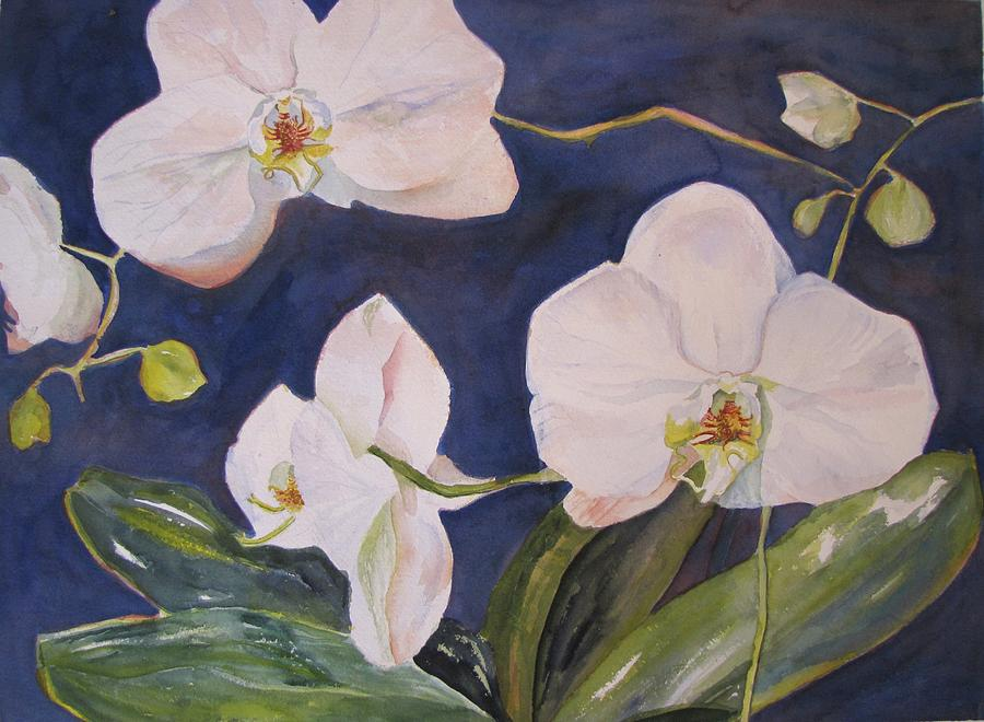 Flowers Painting - Orchids by Nancy Henkel Schulte