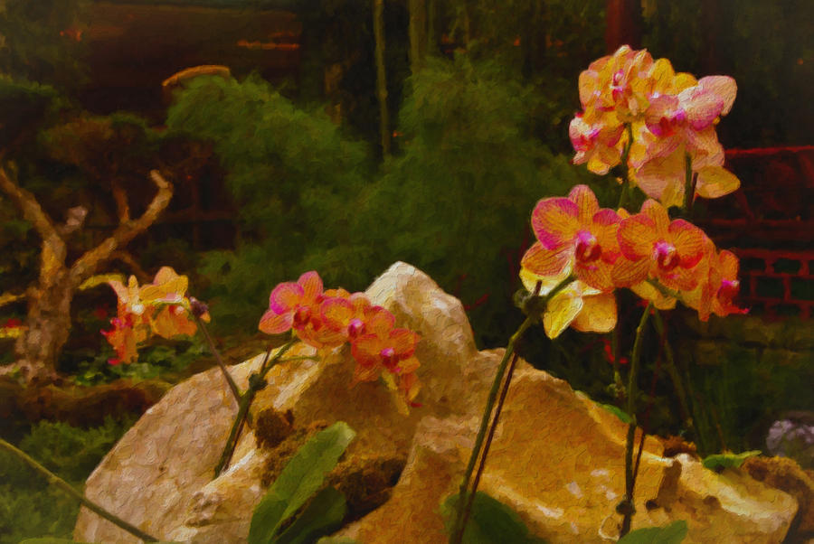 Nature Painting - Orchids by Stephen Campbell