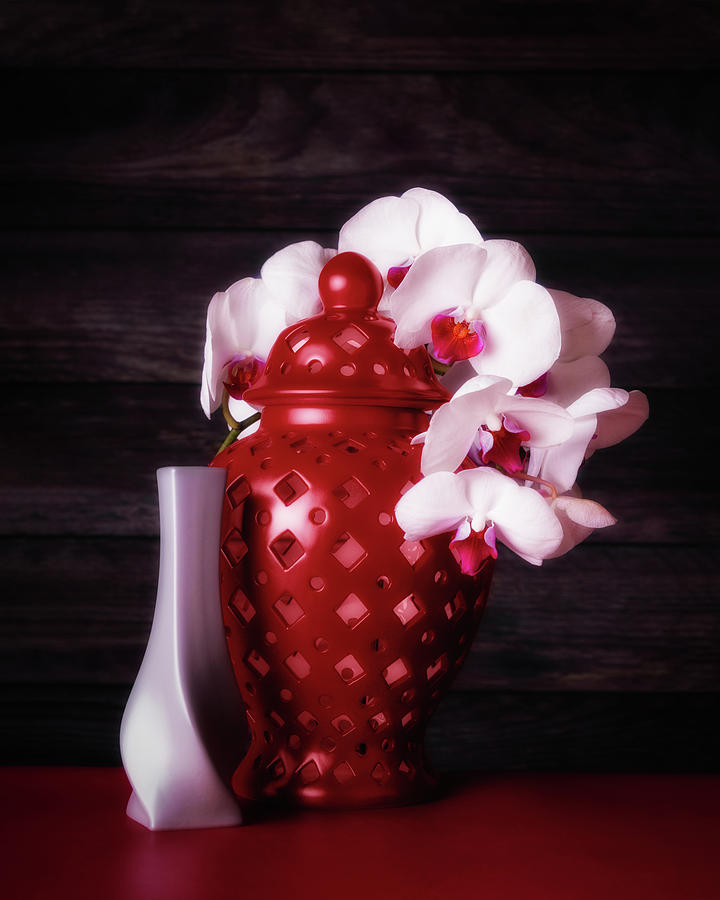 Flower Photograph - Orchids With Red And Gray by Tom Mc Nemar