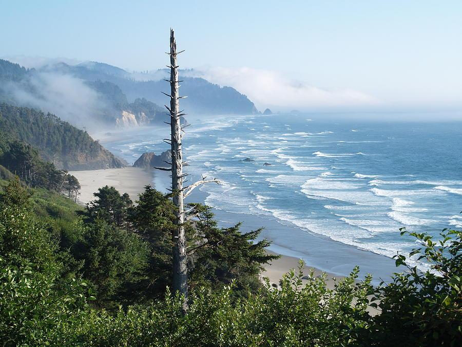 Beach Oregon Photograph - Oregon Beach by James Johnstone