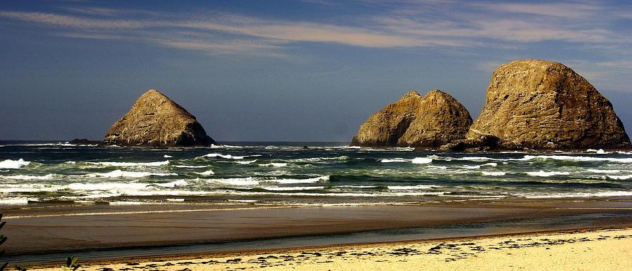 Oregon Coast 14 Photograph by Marty Koch
