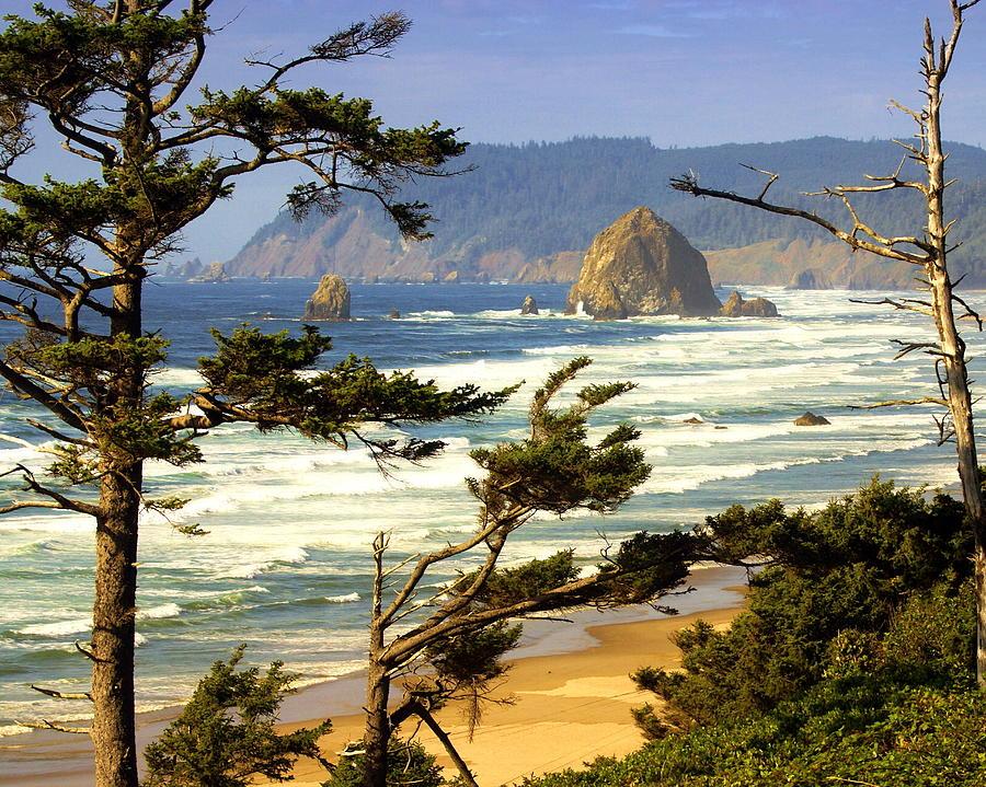 Ocean Photograph - Oregon Coast 15 by Marty Koch