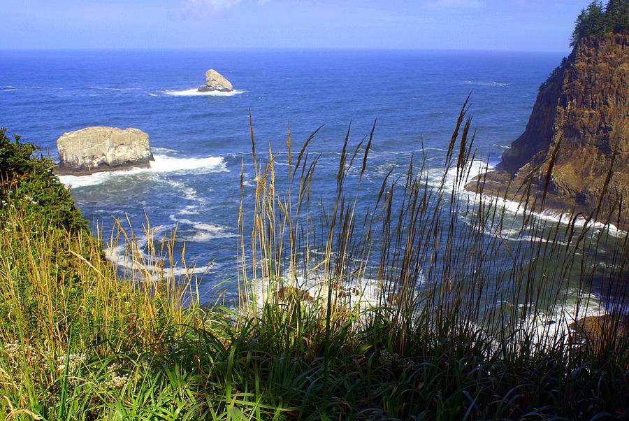 Oregon Coast 4 Photograph by Marty Koch