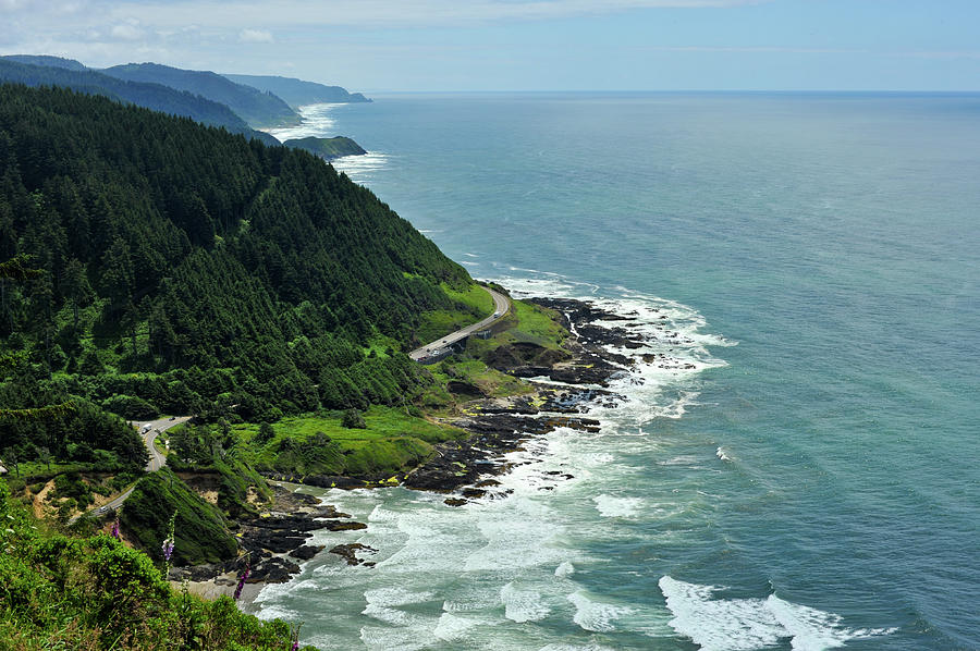Oregon Coast by Crystal Hoeveler
