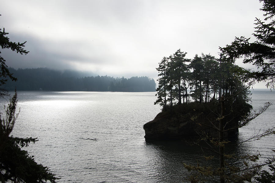 Pacific Northwest Photograph - Oregon Coast Fog by Lindy Grasser