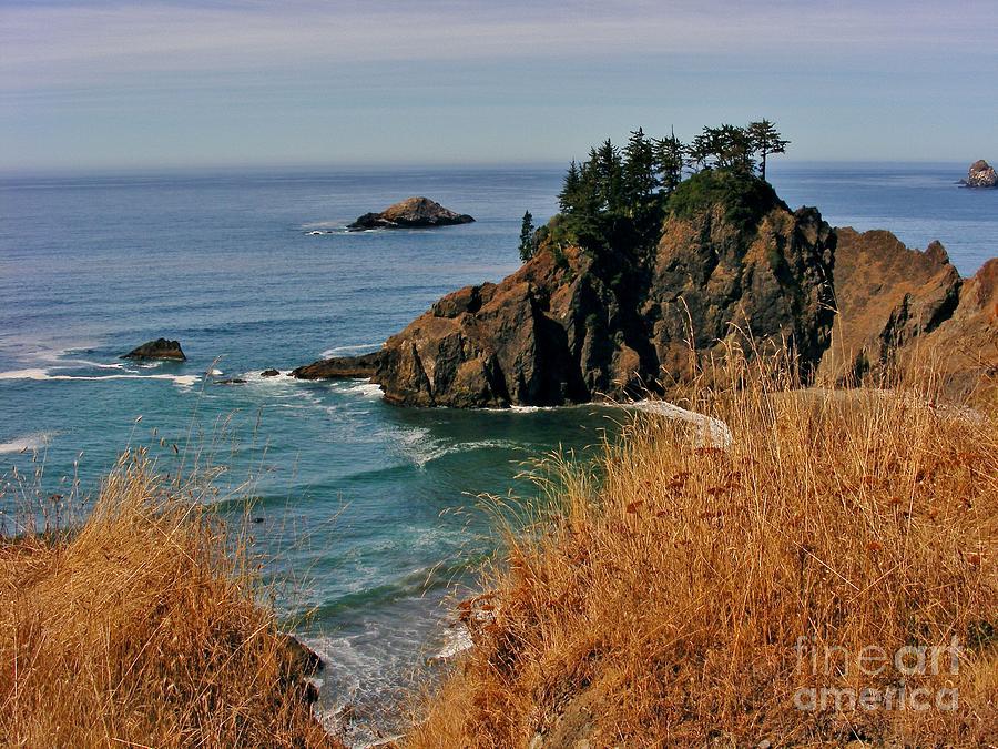 Ocean View Photograph - Oregon Coast by Marilyn Smith