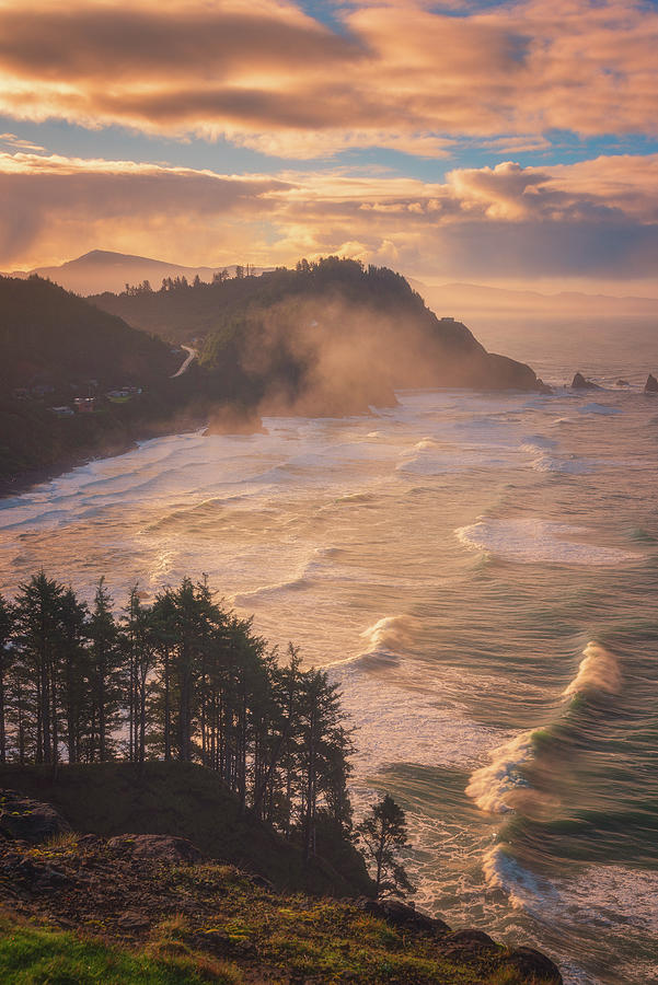 Oregon Coast Mist Photograph