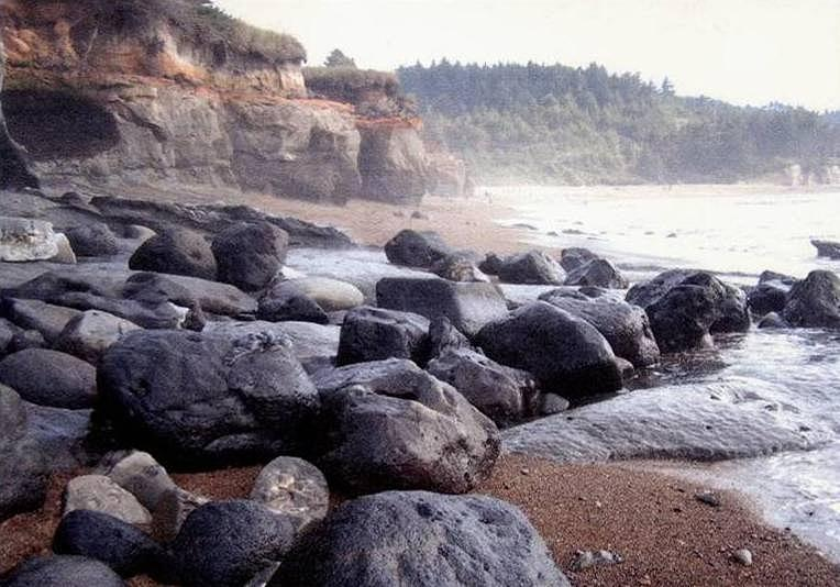 Oregon Coast Rocks by Molly Williams