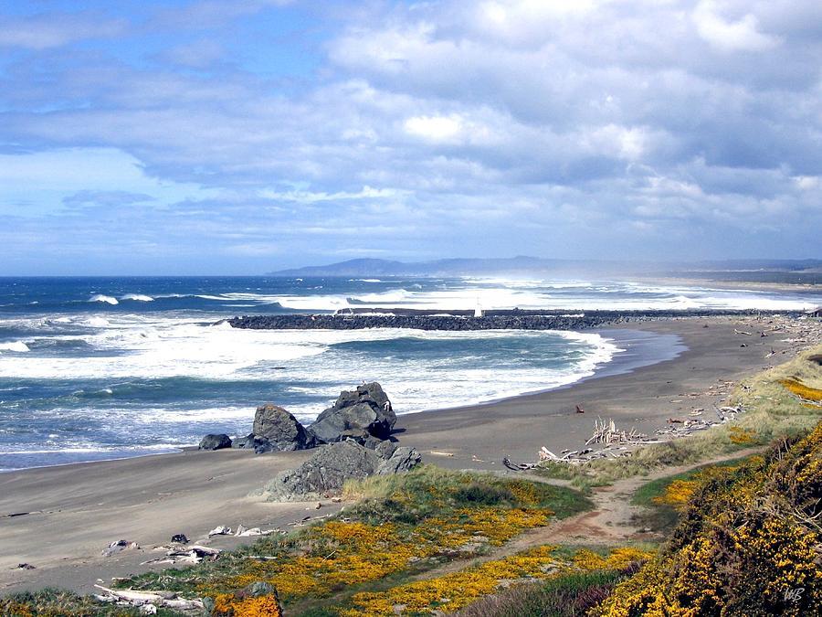 Bandon Photograph - Oregon Coast by Will Borden
