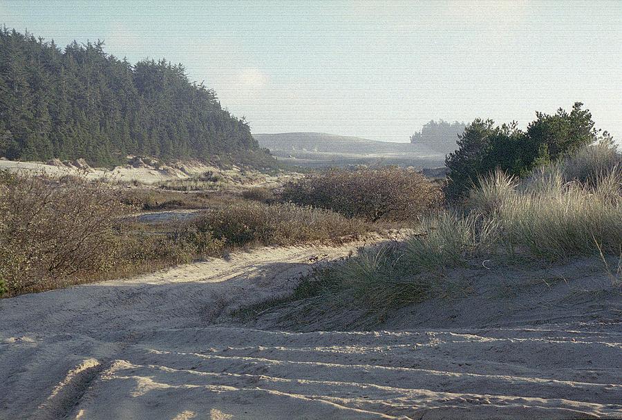 Dunes Photograph - Oregon Dunes 5 by Eike Kistenmacher