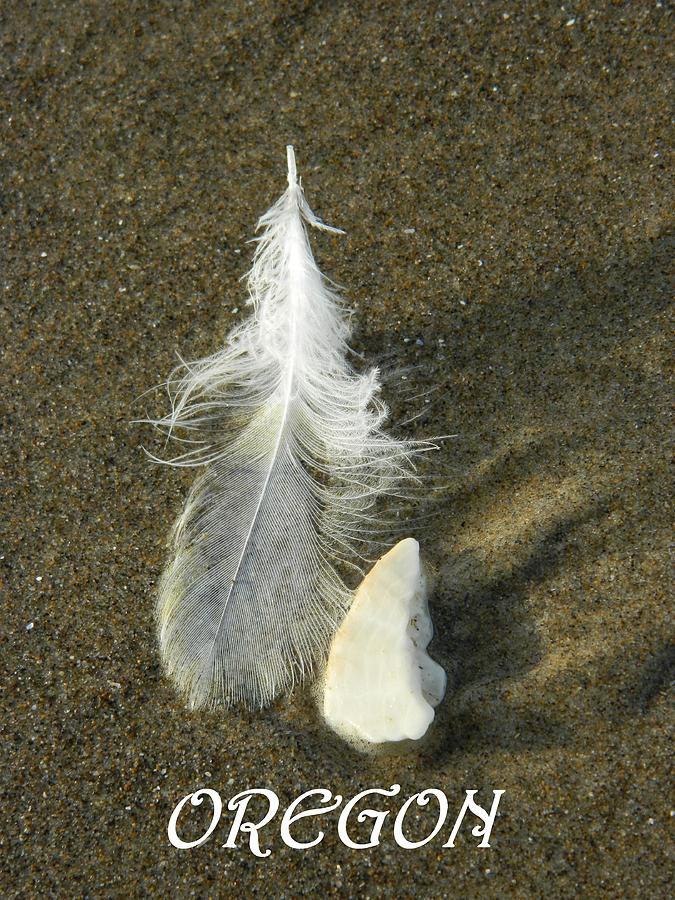 Feathers Photograph - Oregon Feather by Gallery Of Hope
