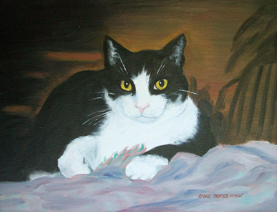 Cat Painting - Oreo by Anne Trotter Hodge