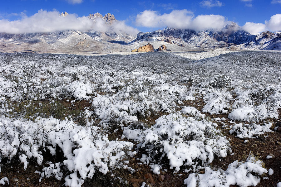 New Mexico Photograph - Organ Mountains With Snow by Patrick Alexander