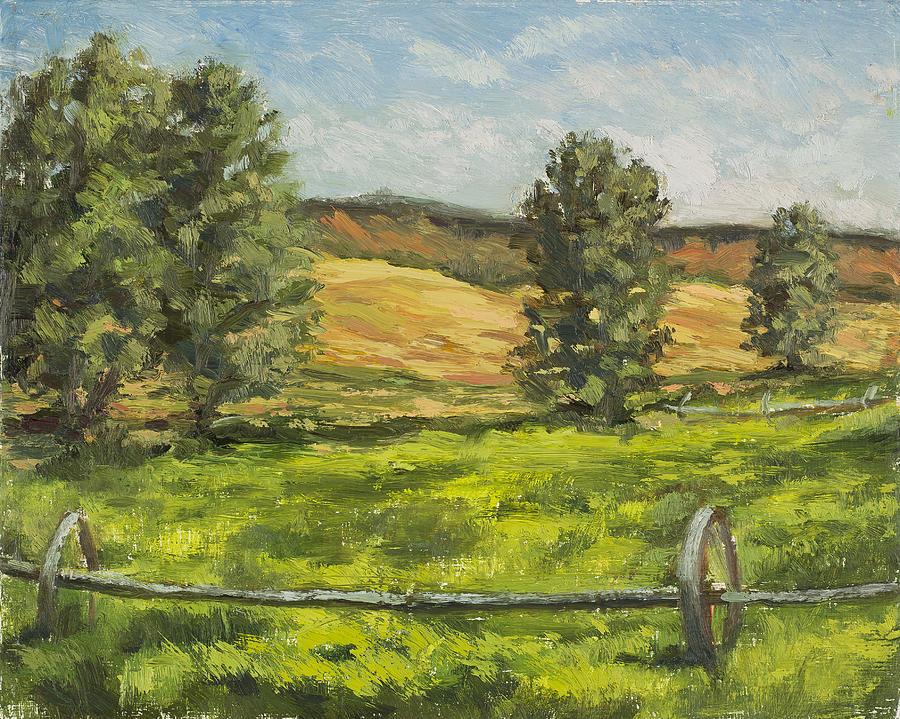 Organic fields by Julie Rumsey