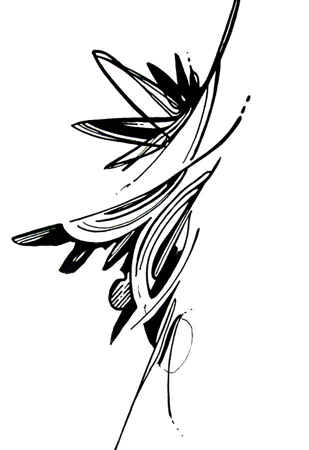 Drawing Organic Abstract Art