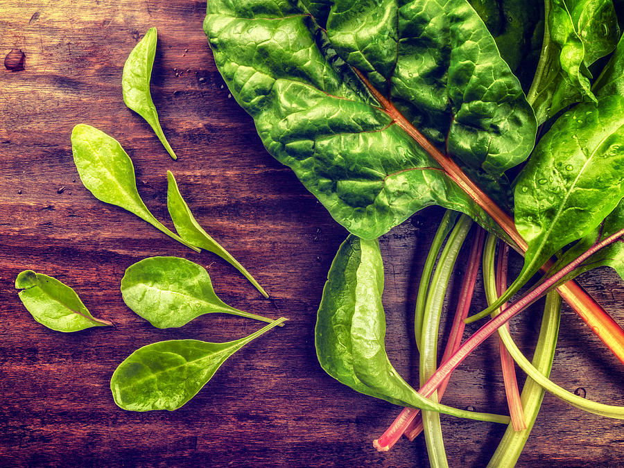 Health Photograph - Organic Rainbow Chard by TC Morgan