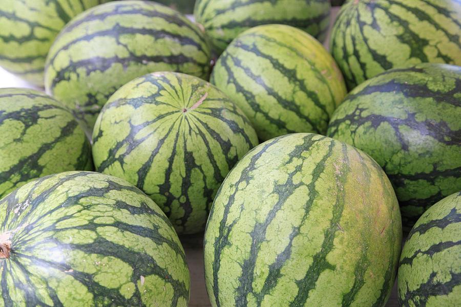 Horizontal Photograph - Organic Watermelon by Wendy Connett