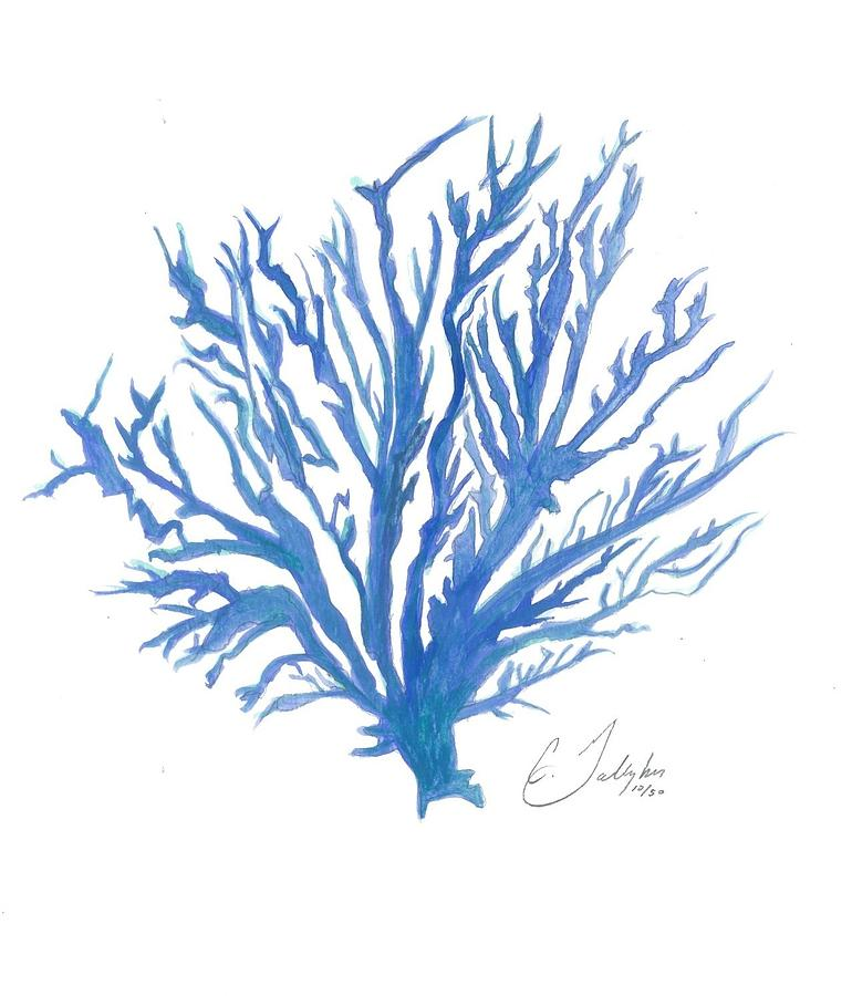 Original Coral Watercolor Painting Painting by Christian ...
