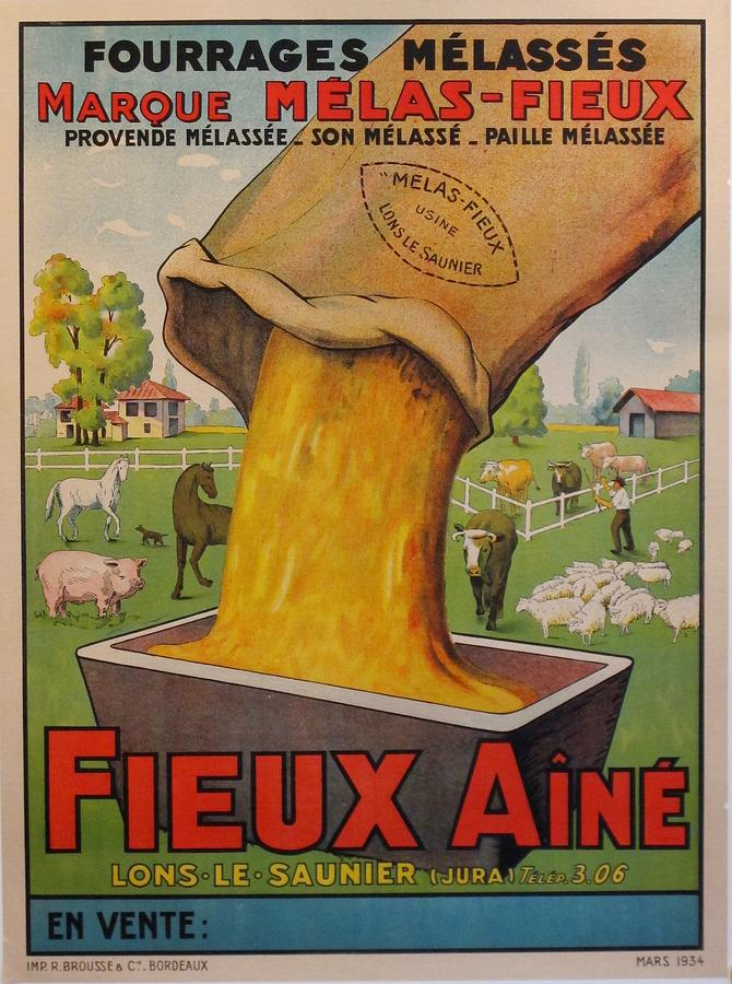Livestock Painting - Original French Vintage Farm Poster, Fourrages Melasses, Fieux Aine by Unknown