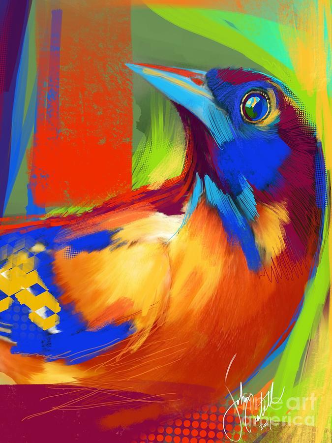 Oriole Bird Portrait by John Castell
