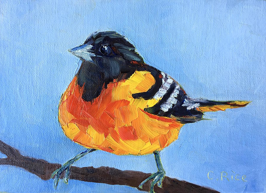 Oriole by Chris Rice