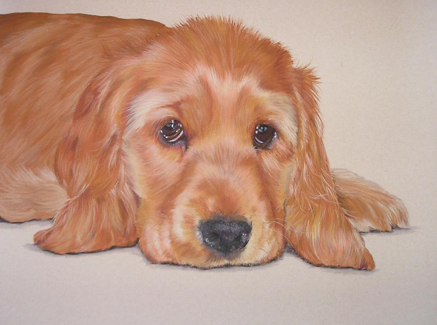 Pastel Pet Portrait Pastel - Oscar by Joanne Simpson