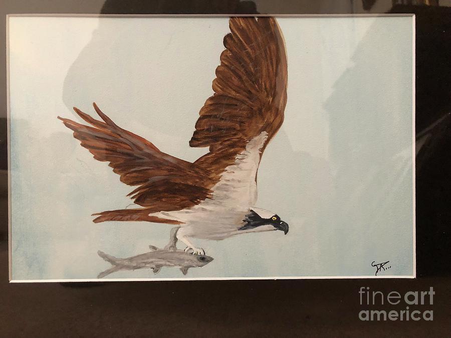 osprey by Donald Paczynski