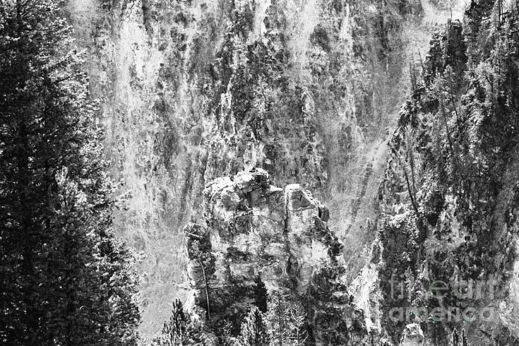 Landscape Photograph - Osprey Nest by Susan Chandler