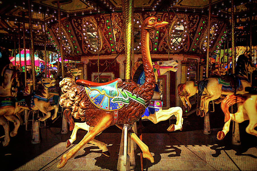 Merry Go Round Photograph - Ostrich Carousel Ride by Garry Gay
