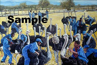 Black Birds Painting - Ostrich Farm by Komi Chen