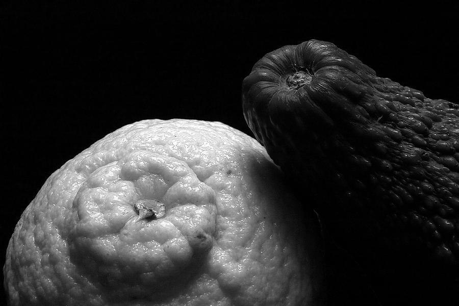 Stilllife Photograph - Othello And Desdemona by Stanislovas Kairys
