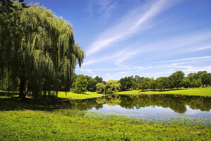 Binghamton Photograph - Otsiningo Park Reflection Landscape by Christina Rollo