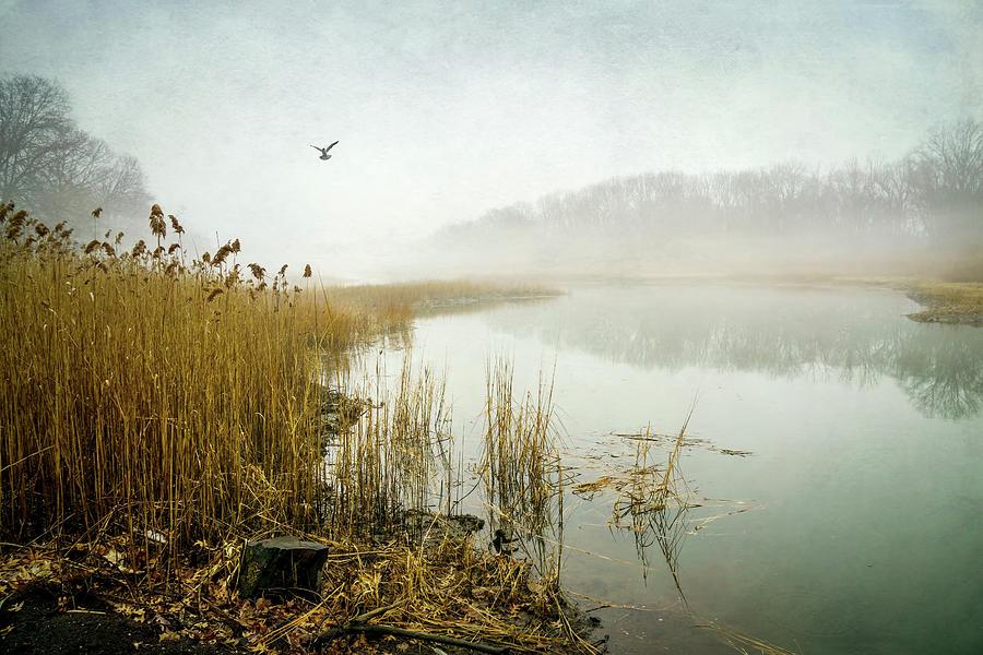 Otter Creek Photograph
