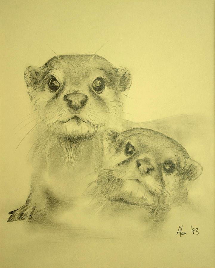 Lutrinae Drawing - Otters by Alan Pickersgill