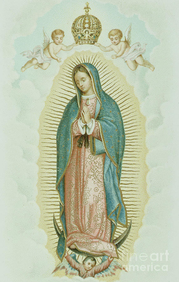 Virgin Drawing - Our Lady of Guadalupe by French School