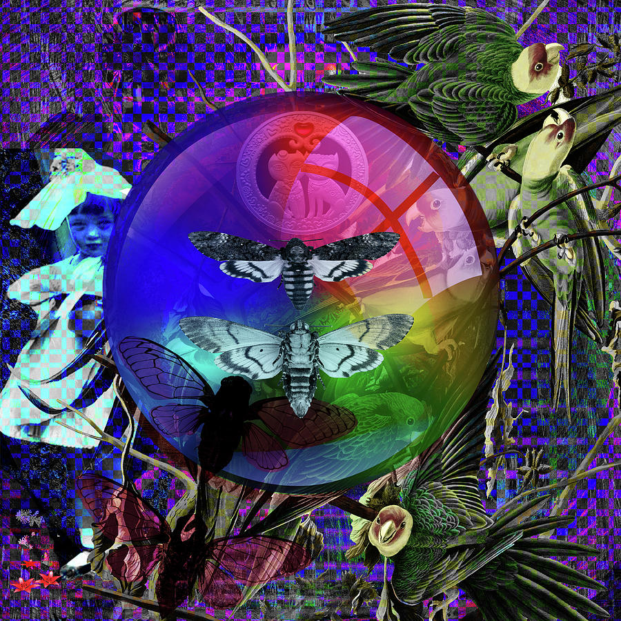 Solar Digital Art -  Our Life Spectrum by Joseph Mosley