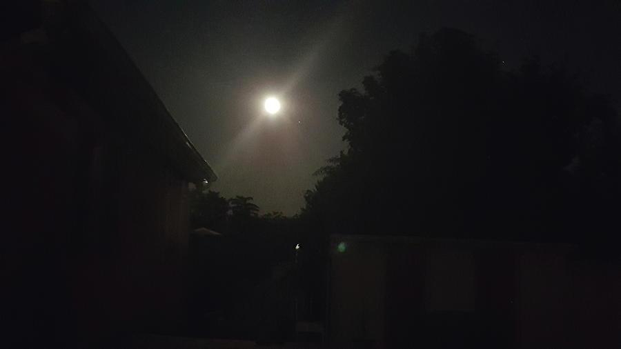 Moon Photograph - Our Neighbor by Neal Alicakos