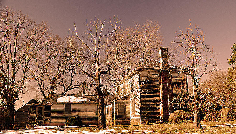 Rural Virginia Photograph - Out Back by Patricia Motley