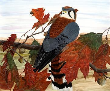 Fall Painting - Out On A Limb by William Gowins