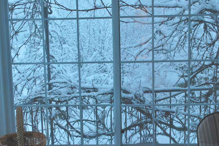 Snow Photograph - Out The Window by Peter Williams