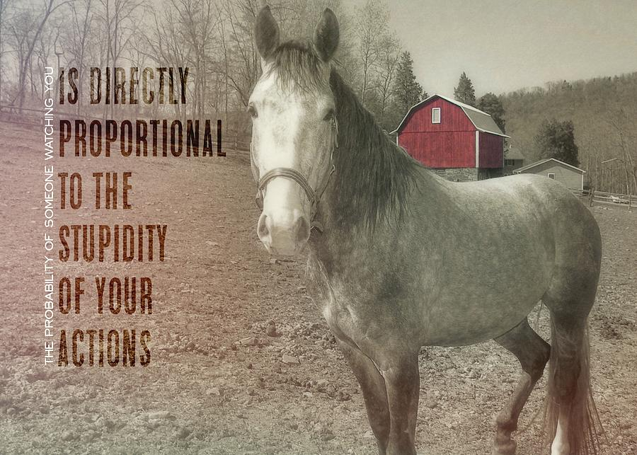 Horse Photograph - Out To Pasture Quote by JAMART Photography