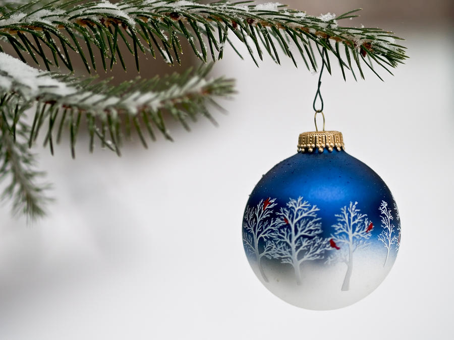 Background Photograph - Outdoors Christmas Ornament by Jim DeLillo