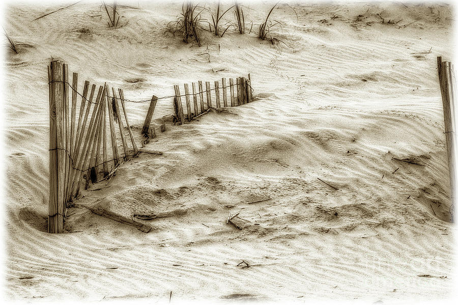 Sand Photograph - Outer Banks Beach Sand Fence  by Randy Steele