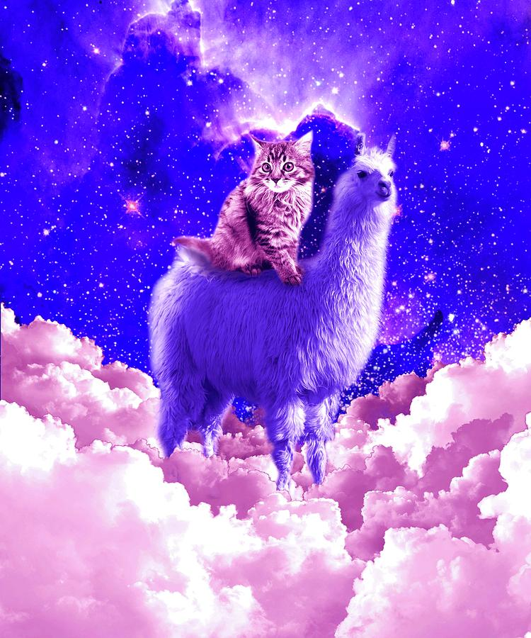 Cats Digital Art - Outer Space Galaxy Kitty Cat Riding On Llama by Random Galaxy