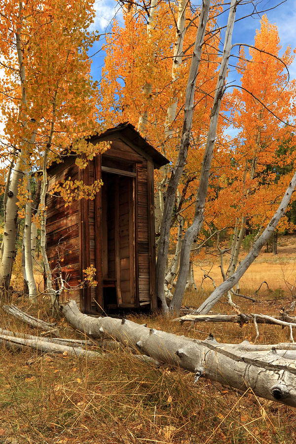 Outhouse Photograph - Outhouse In The Aspens by James Eddy