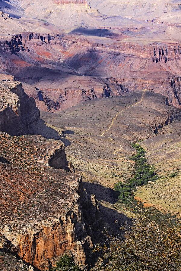 Arizona Photograph - Outlook by Viktor Savchenko
