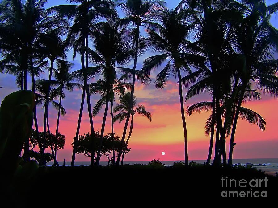 Outrigger Garden Sunset Sky Photograph