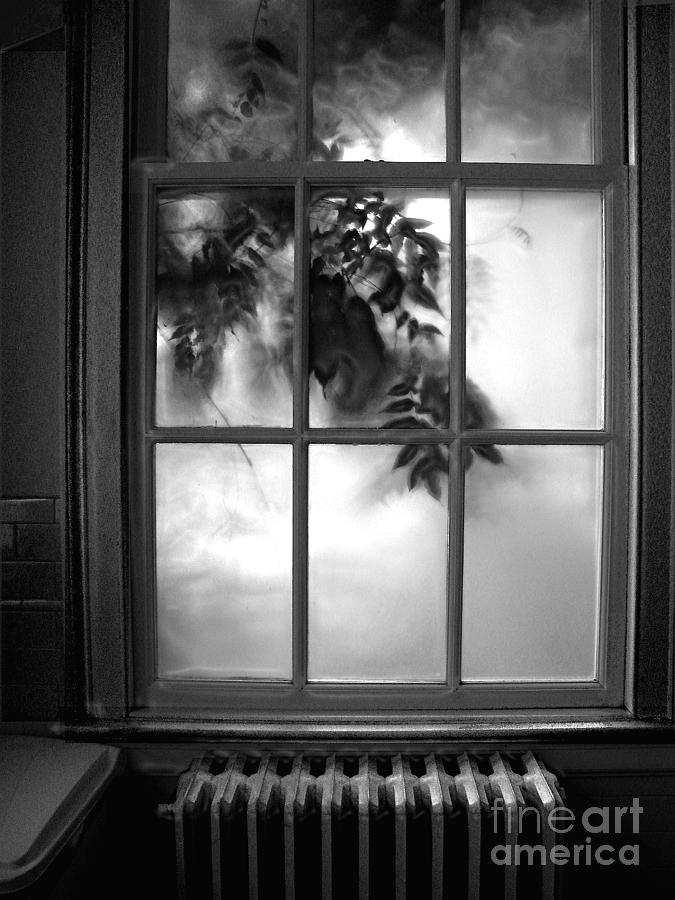 Outside Looking In by Amaryllis Leon