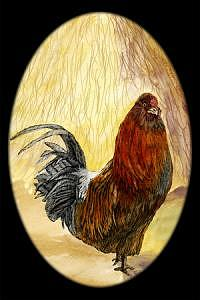 Farm Scene Mixed Media - Oval Rooster by Elizabeth Jones